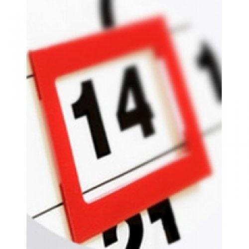 Календарные курсоры 29 х 33 см, красные, 100 шт