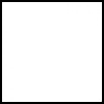 Термопленка  Promaflex PVC 01 белый,  0,51 см х 25 м (Франция)
